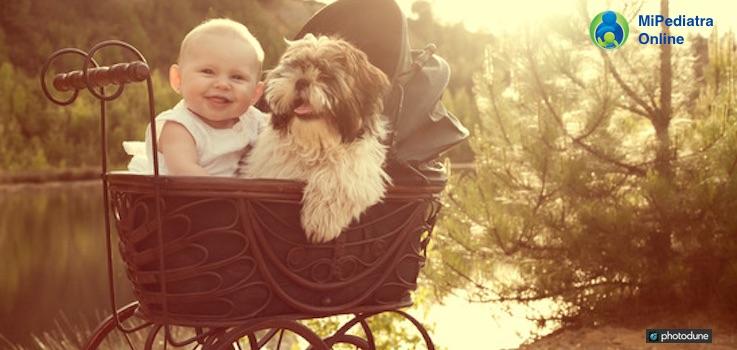 Para transportar un bebé de forma segura