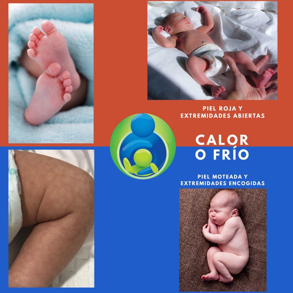 Evitar que un bebé pase frío o calor orientándonos por sus mecanismos de adaptación